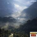Sonny Ianni - Sympathy Roads