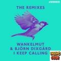 Wankelmut, Björn Dixgård - I Keep Calling (Wankelmut Club Mix)